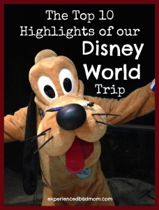 Top 10 Highlights of Disney World Trip