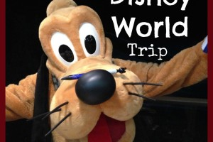 The Top 10 Highlights of our Disney World Trip