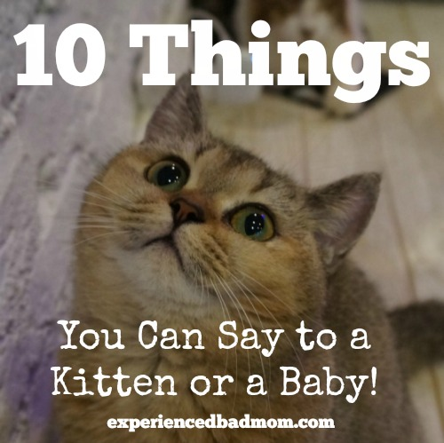 10 Things You Can Say to a Kitten or a Baby