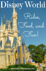 Disney World Rides, Food, and Fun