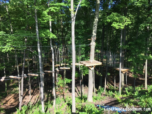 A Family Adventure in the Trees a view of Grand Rapids Treetop Adventure Park