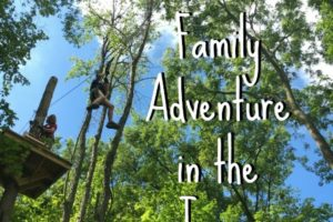 A Grand Family Adventure in the Trees