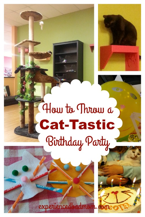 How to Throw a Cat-tastic Birthday Party