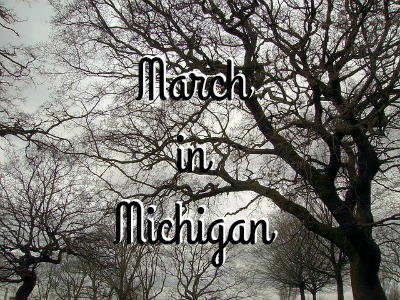 Things I Want to Complain About: Like March in Michigan