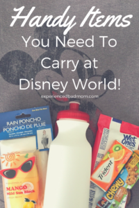 Handy Items You Need To Carry At Disney World