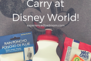 Check out these handy items you need to carry at Disney World. You'll be happy you brought these along on your visit to the Happiest Place on Earth!