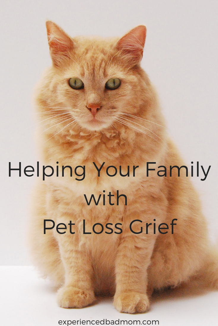 Helping Your Family with Pet Loss Grief