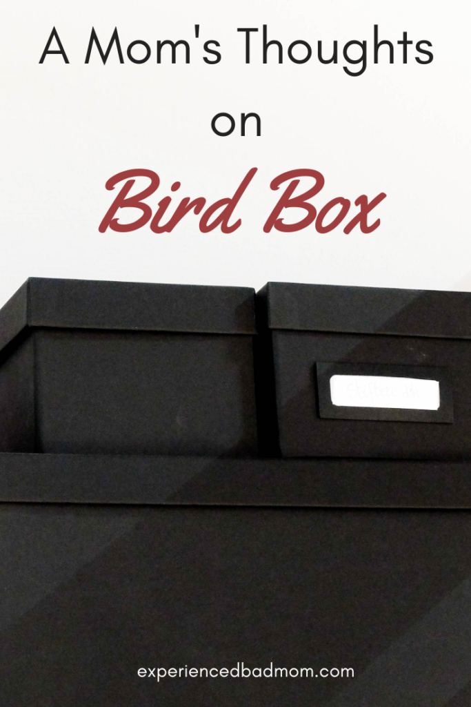 A Mom's Thoughts on Bird Box
